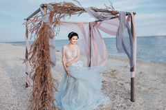 härlig klänningflickagrey Arkivfoto