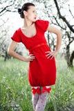 härlig klänningmodellred royaltyfria foton