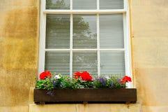 Härlig klassisk vägg med fönster Arkivfoto