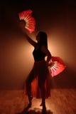 Härlig kontur av en flicka som dansar elegantly i rök och dimma Arkivfoton