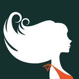 Härlig kontur för elegant kvinna Fotografering för Bildbyråer