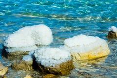 Härlig kust av det döda havet Royaltyfria Foton