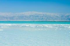 Härlig kust av det döda havet Arkivfoto