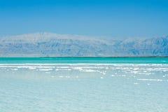 Härlig kust av det döda havet Fotografering för Bildbyråer