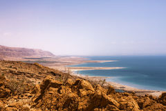 Härlig kust av det döda havet Arkivbilder