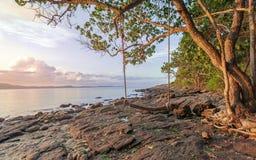 Härlig kust i morgonsoluppgång med naturträgunga royaltyfri bild