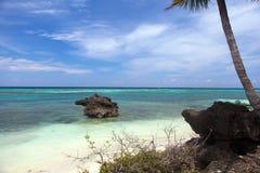 Härlig kustlinje, turkossikt av havet med palmträd a Arkivfoton