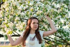 Härlig kvinna, i att blomstra äppleträd Royaltyfri Foto