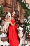 Härlig kvinna i den röda aftonklänningen som sitter på momenten med hennes hund som är skrovlig på en bakgrund av ett jul dekorer arkivfoton