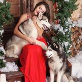 Härlig kvinna i den röda aftonklänningen som sitter på momenten med hennes hund som är skrovlig på en bakgrund av ett jul dekorer arkivfoto