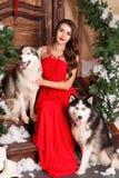 Härlig kvinna i den röda aftonklänningen som sitter på momenten med hennes hund som är skrovlig på en bakgrund av ett jul dekorer royaltyfria foton