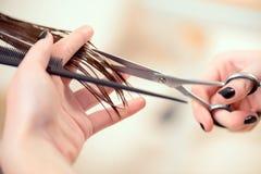 Härlig kvinna i hårsalong Fotografering för Bildbyråer