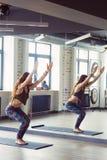 Härlig kvinna i yogagrupp royaltyfri bild