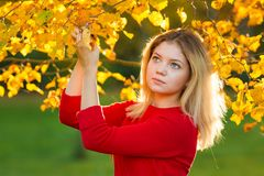Härlig kvinna med Autumn Leaves på nedgångnaturbakgrund Arkivbild
