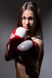 Härlig kvinna med boxninghandskarna royaltyfri bild