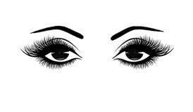 Härlig kvinna` s synar närbilden, tjocka långa ögonfrans, svartvit vektorillustration vektor illustrationer