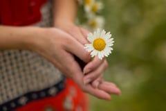 Härlig kvinna som tycker om tusenskönafältet, trevlig kvinnlig som ner ligger i ängen av blommor, nätt koppla av för flicka som ä Arkivbilder