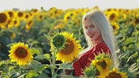 Härlig kvinnastående i solrosfältet, ultrarapid stock video