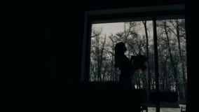 Härlig kvinnlig kontur mot ett stort ljust fönster buketten blommar flickaholdingen Härlig konstnärlig ram stock video