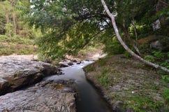 Härlig lång exponering som skjutas av vattenfallet Sammansättning av naturen royaltyfri bild