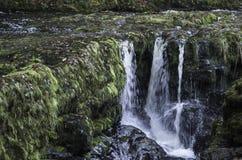 Härlig långsam slutarehastighet på vattenfall i södra Wales Arkivbilder