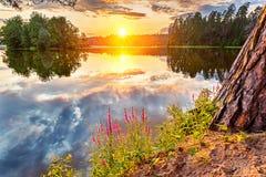 härlig lake över solnedgång Royaltyfri Bild