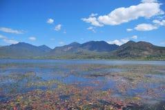 härlig lake Royaltyfri Fotografi