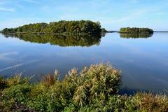 Härlig lake Arkivbild