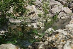 härlig lake Arkivfoto