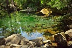 härlig lake Royaltyfria Bilder