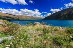 Härlig lake Wakatipu Royaltyfri Fotografi