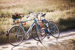 Härlig landskapbild med cykeln Arkivfoto