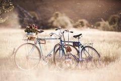 Härlig landskapbild med cykeln Arkivbilder