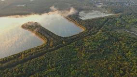 Härlig landskapmorgonsoluppgång över ström och sörjer trädet som campar i sjön arkivfilmer