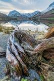 Härlig landskapplats på Buttermere med stillsamma reflexioner och Frosty Tree Royaltyfri Foto