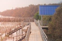 Härlig landskapsommar som är säsongsbetonad av blå paviljong med vandringsledet eller gångbanan i mangroveskog på den Bangpu rekr Arkivbilder