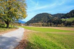 härlig landsliggande Fjällängberg, Österrike Royaltyfria Bilder