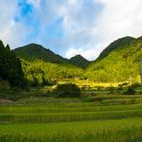 härlig landsliggande Rislantgård i bergskog Arkivfoto