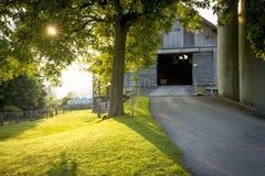 Härlig lantgård i Schweiz Arkivfoto