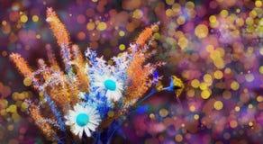 Härlig lantlig färgrik affisch Realistiska tusenskönor för lösa blommor för bukett för dekorativ design Modedesign vektor för ro  royaltyfria foton