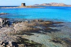 Härlig LaPelosa strand i Stintino, Sardinia, Italien Arkivbild