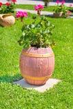 härlig lera blommar den offentliga vasen för stället Royaltyfria Bilder