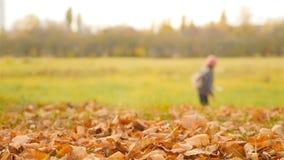 härlig liggande för höst Flickan tar bilder av skogen i defocus långsam rörelse arkivfilmer