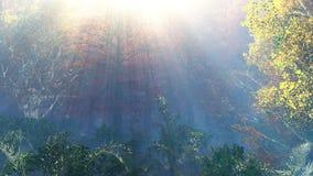 härlig liggande för höst Höstträd över vattnet arkivbild