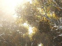 härlig liggande för höst Höstträd över vattnet arkivfoton