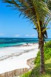 härlig liggande för strand royaltyfria bilder
