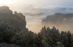 Härlig liggande i bergen Arkivbilder