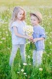 Härlig liten flicka som lite kramar pojken i ett fält av chamomien royaltyfria foton