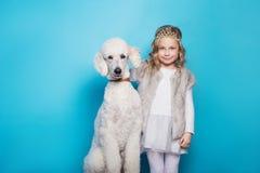Härlig liten prinsessa med hunden kamratskap husdjur Studiostående över blå bakgrund Fotografering för Bildbyråer