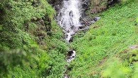 härlig liten vattenfall stock video